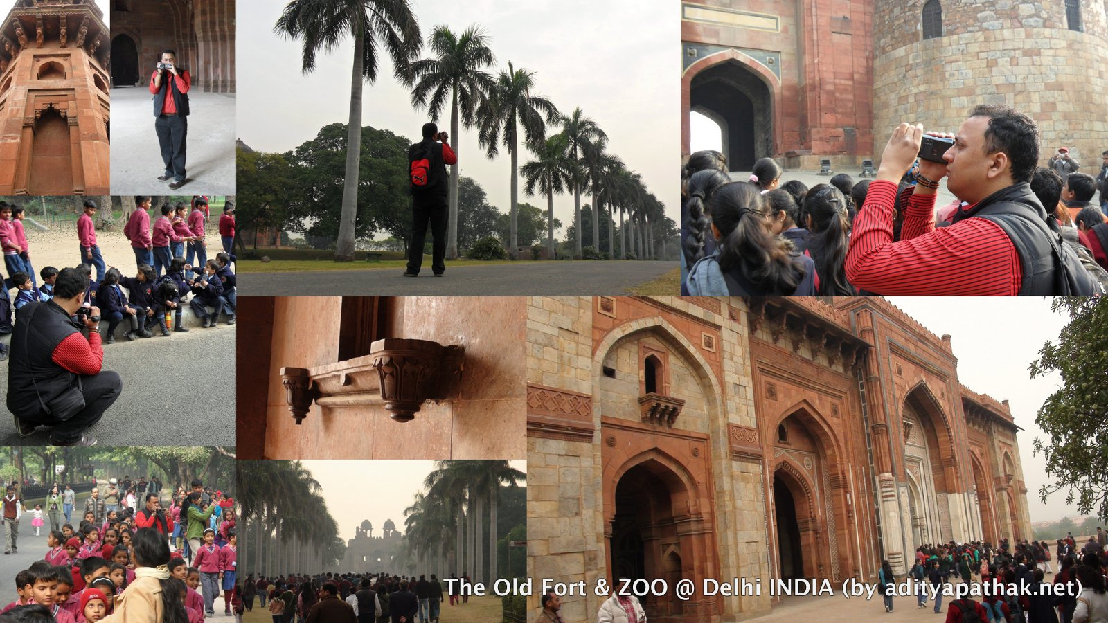 Purana Qila Zoo Collage 2