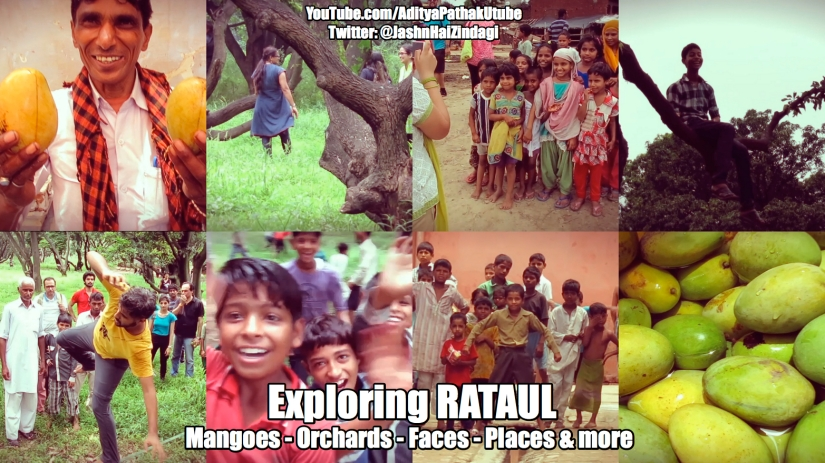 Rataul : Mangoes, Orchards, Faces, Places and more:)