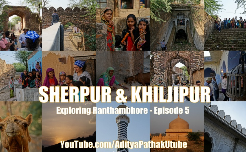 Ruins at Sherpur and Khiljipur village near Ranthambhore!