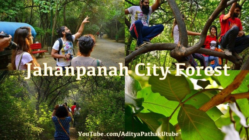 Jahanpanah City Forest