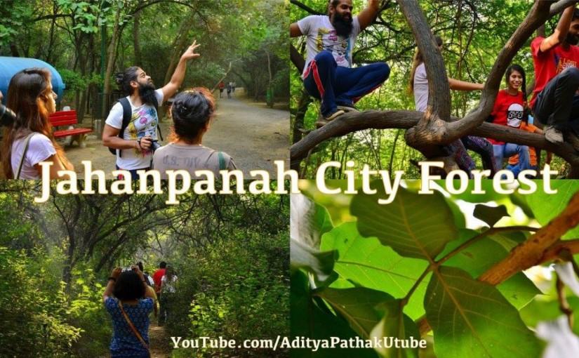 Jahanpanah City Forest