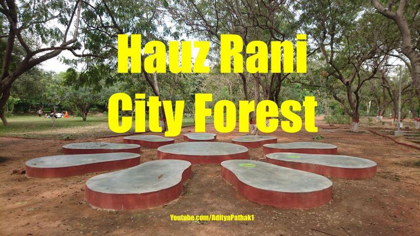 City Forest Hauz Rani – Tranquil Places inDelhi